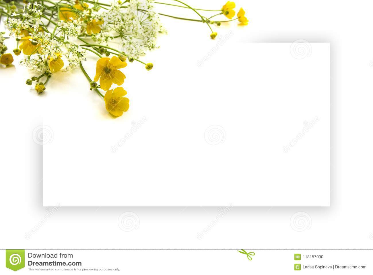 https www dreamstime com summer yellow white wildflowers blank greeting card background sheet paper congratulations empty space image118157090