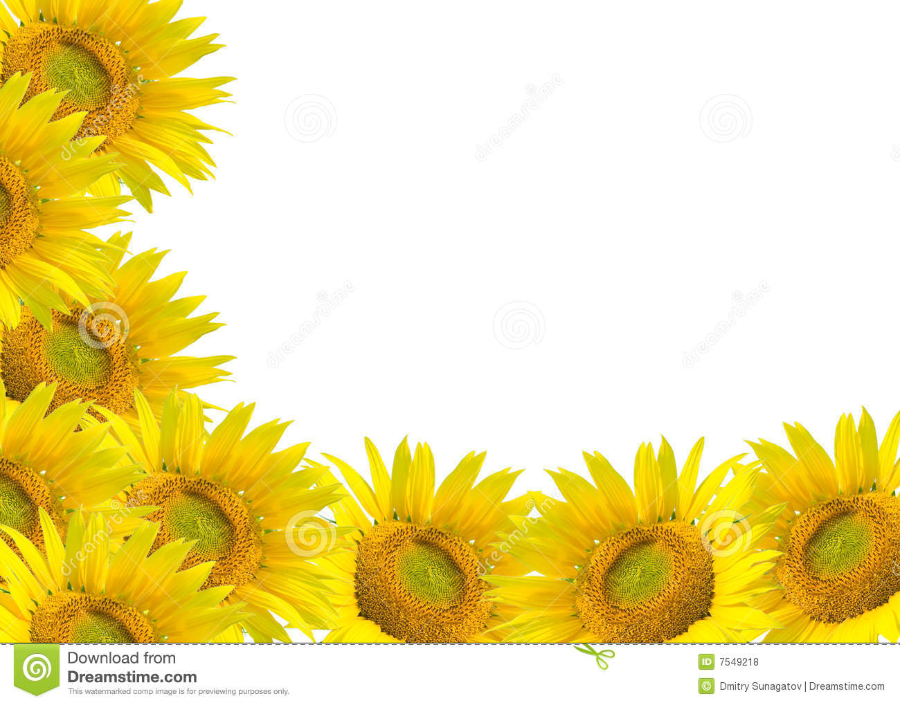 Rustic Sunflower Wallpaper