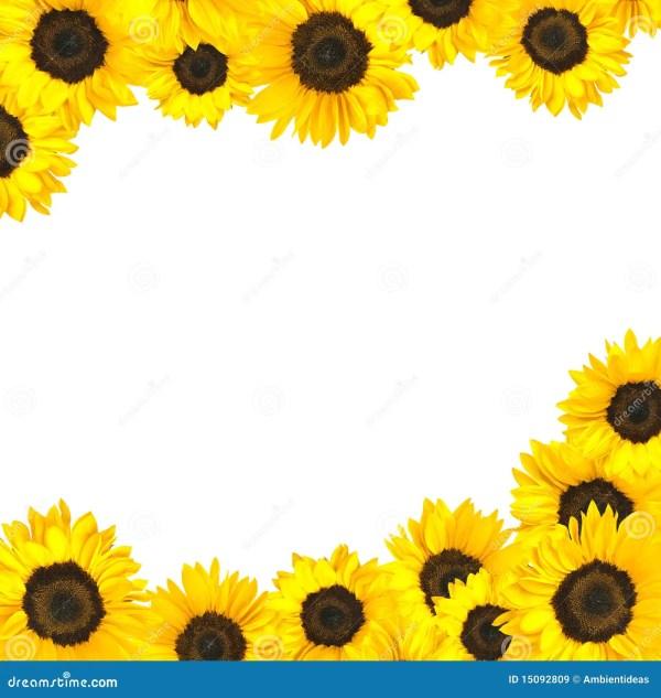 flower design background black