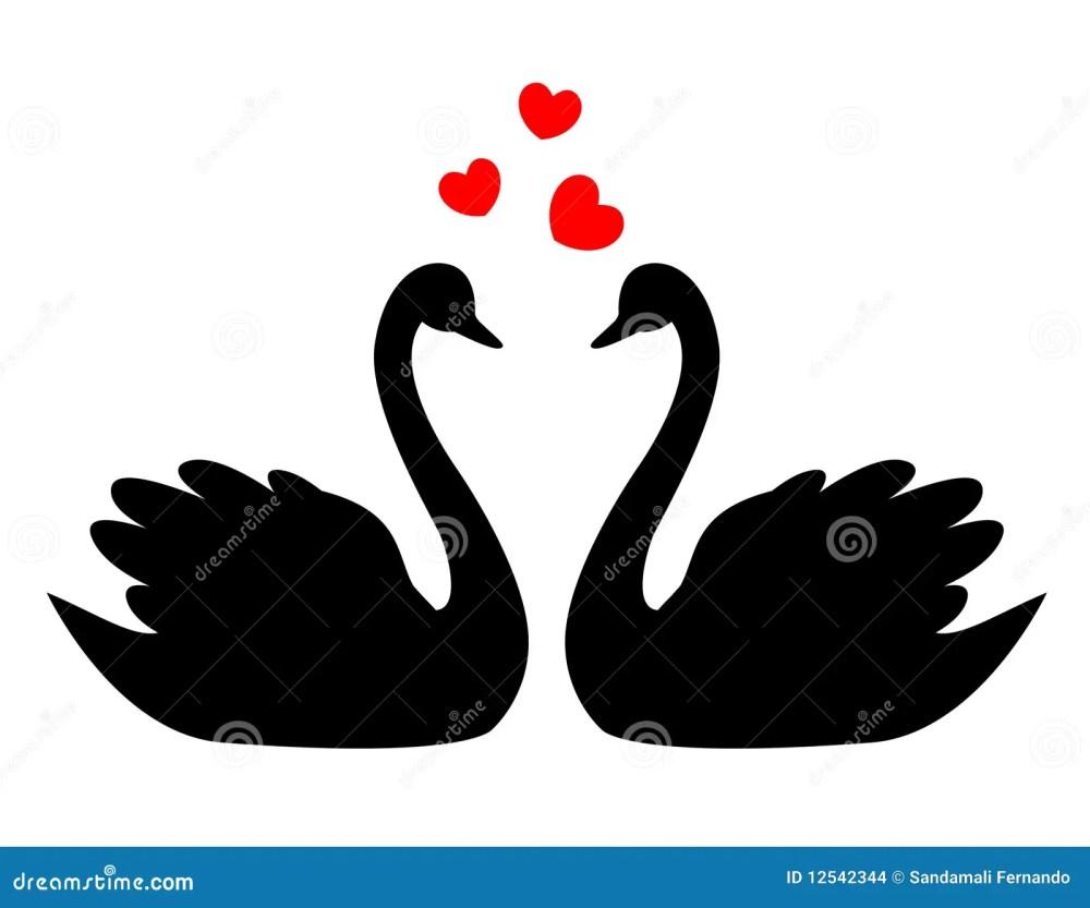 medium resolution of swans in love