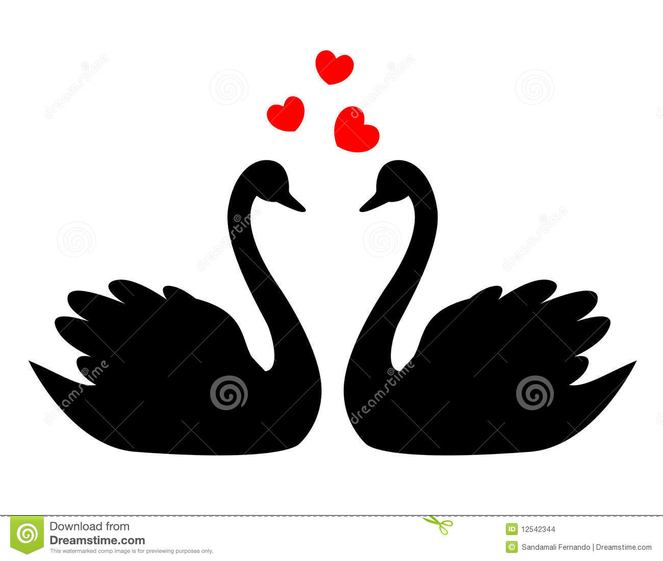 hight resolution of swans in love