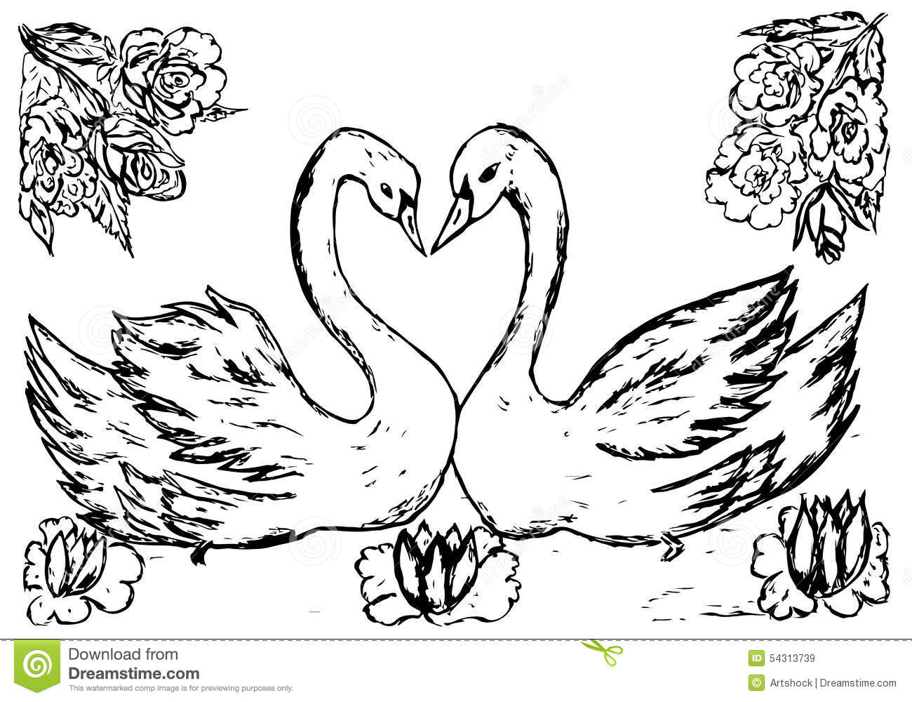 Swans In The Pond Sketch Stock Vector