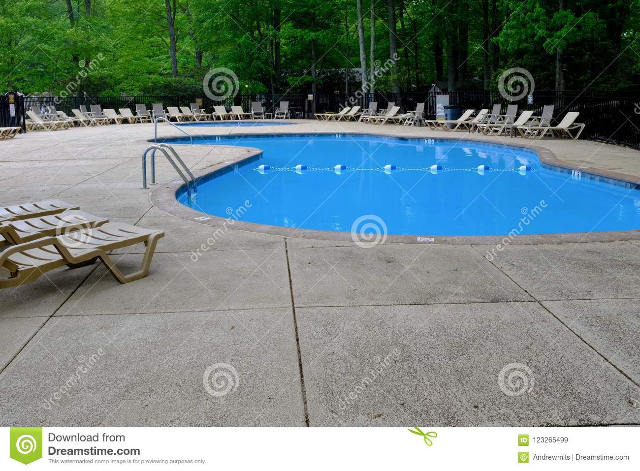 Pool Deck Chairs Pool Deck And Lounge Chairs In Green Forest Stock Image Image Of