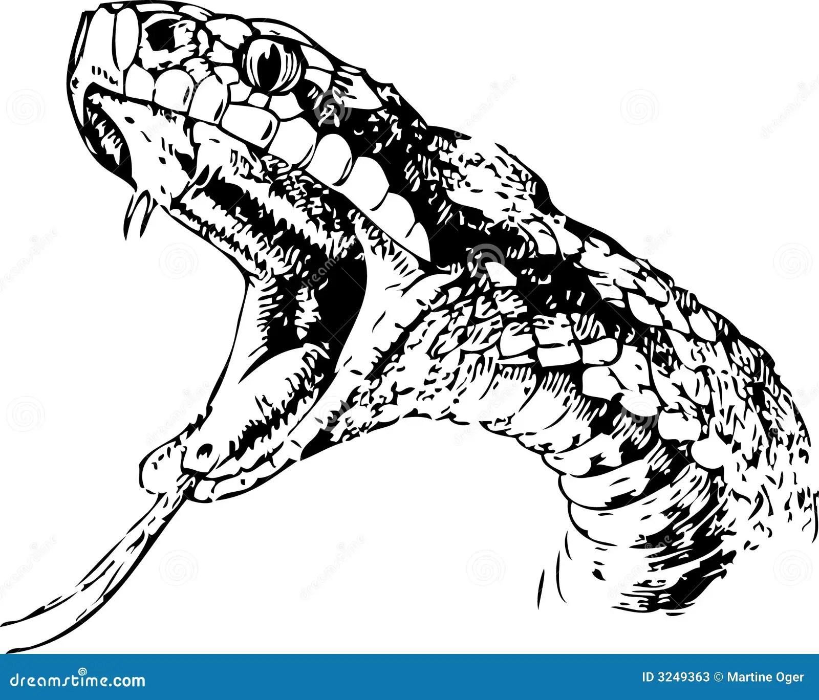 Szkic wąż ilustracja wektor. Ilustracja złożonej z