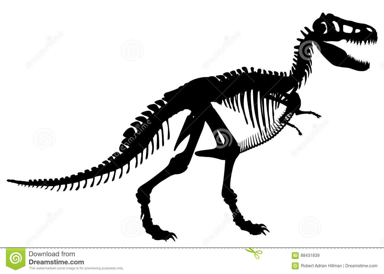 T Rex Skeleton Stock Vector Illustration Of Black