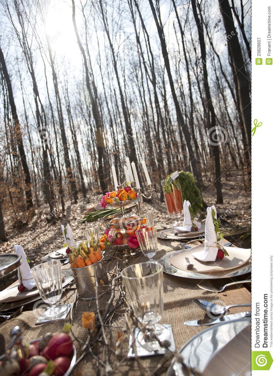 Table With Food In Forest Stock Image Image Of Garden