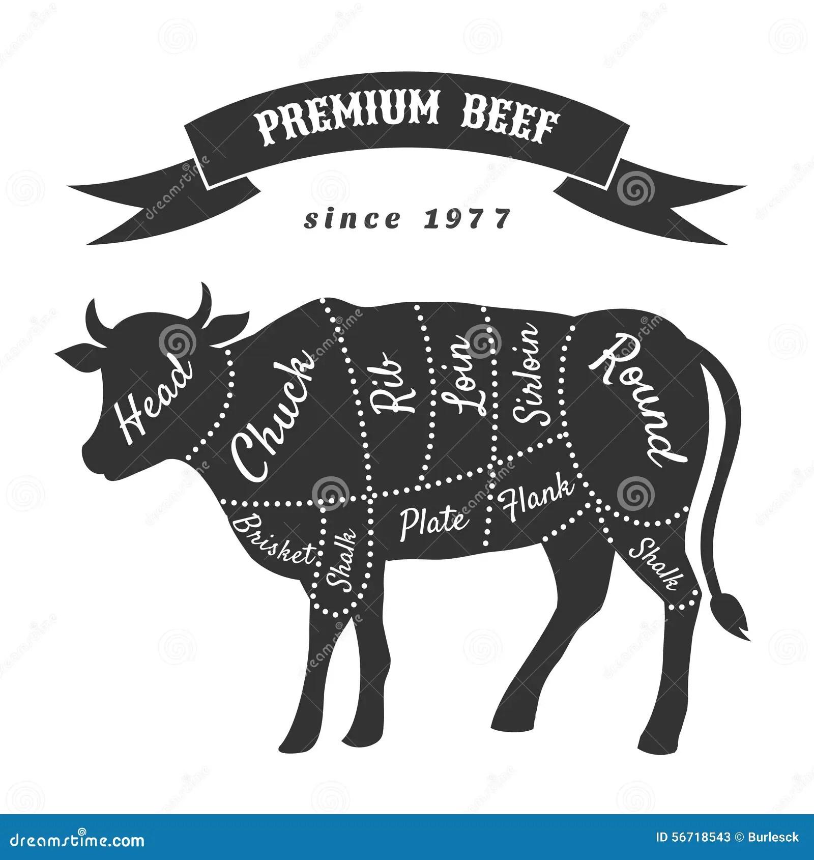 beef cow cut diagram wiring lights tagli del manzo per il manifesto di macelleria