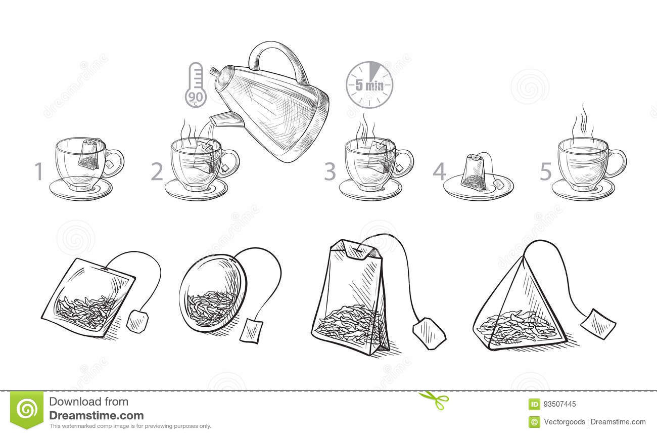 Tea Bag Brewing Cooking Directions. Stock Vector