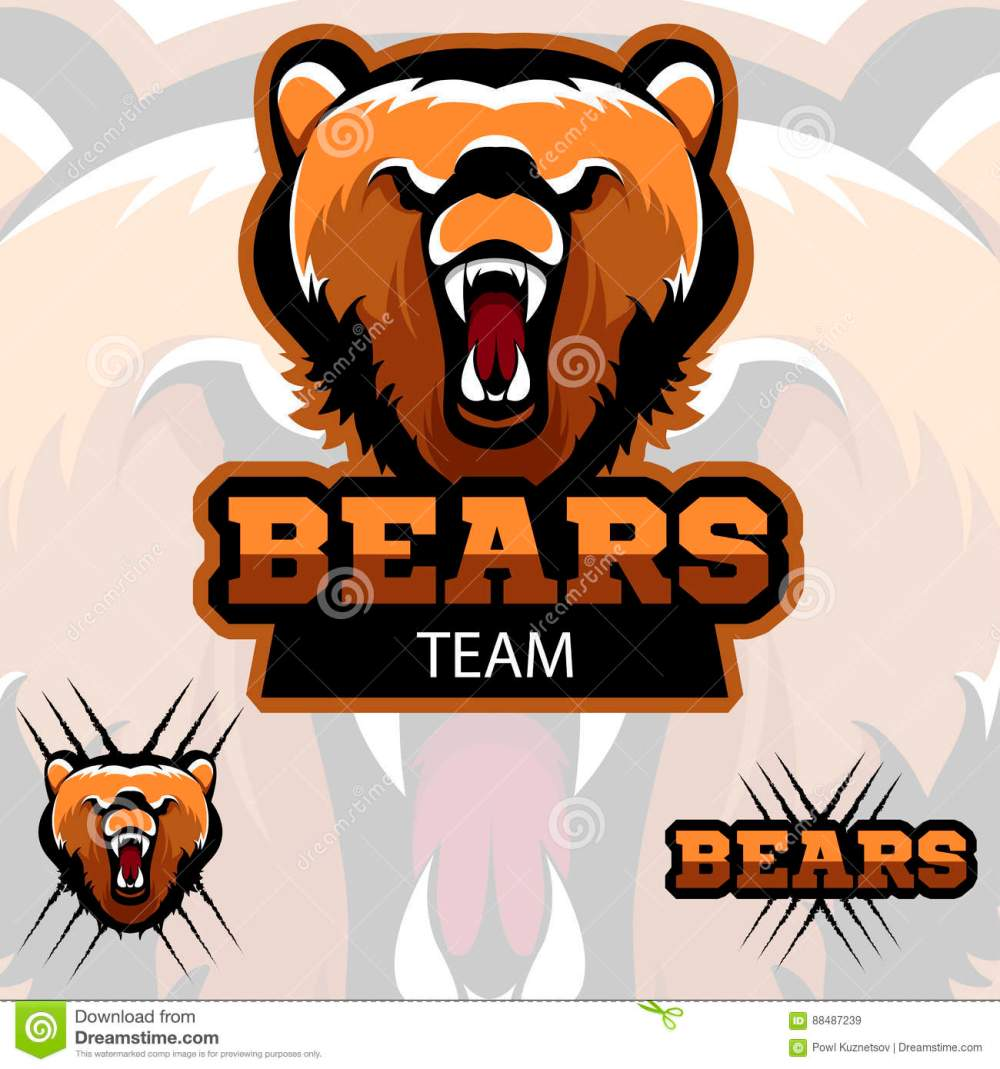 medium resolution of team bears mascot logo modern sport logotype