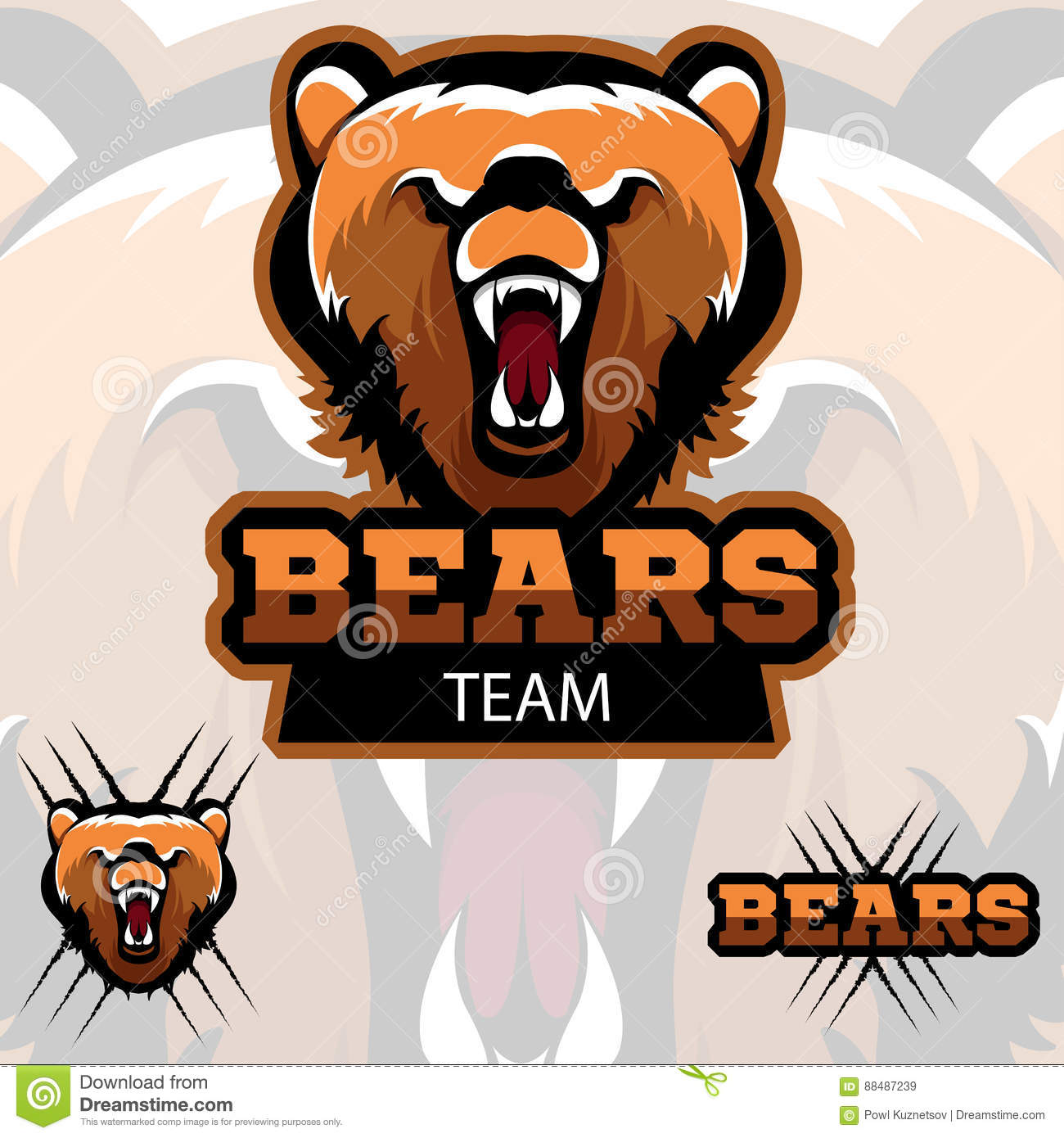 hight resolution of team bears mascot logo modern sport logotype