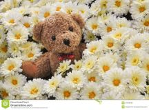 Teddy Bear In Flowers Stock Photography - Image: 37909642