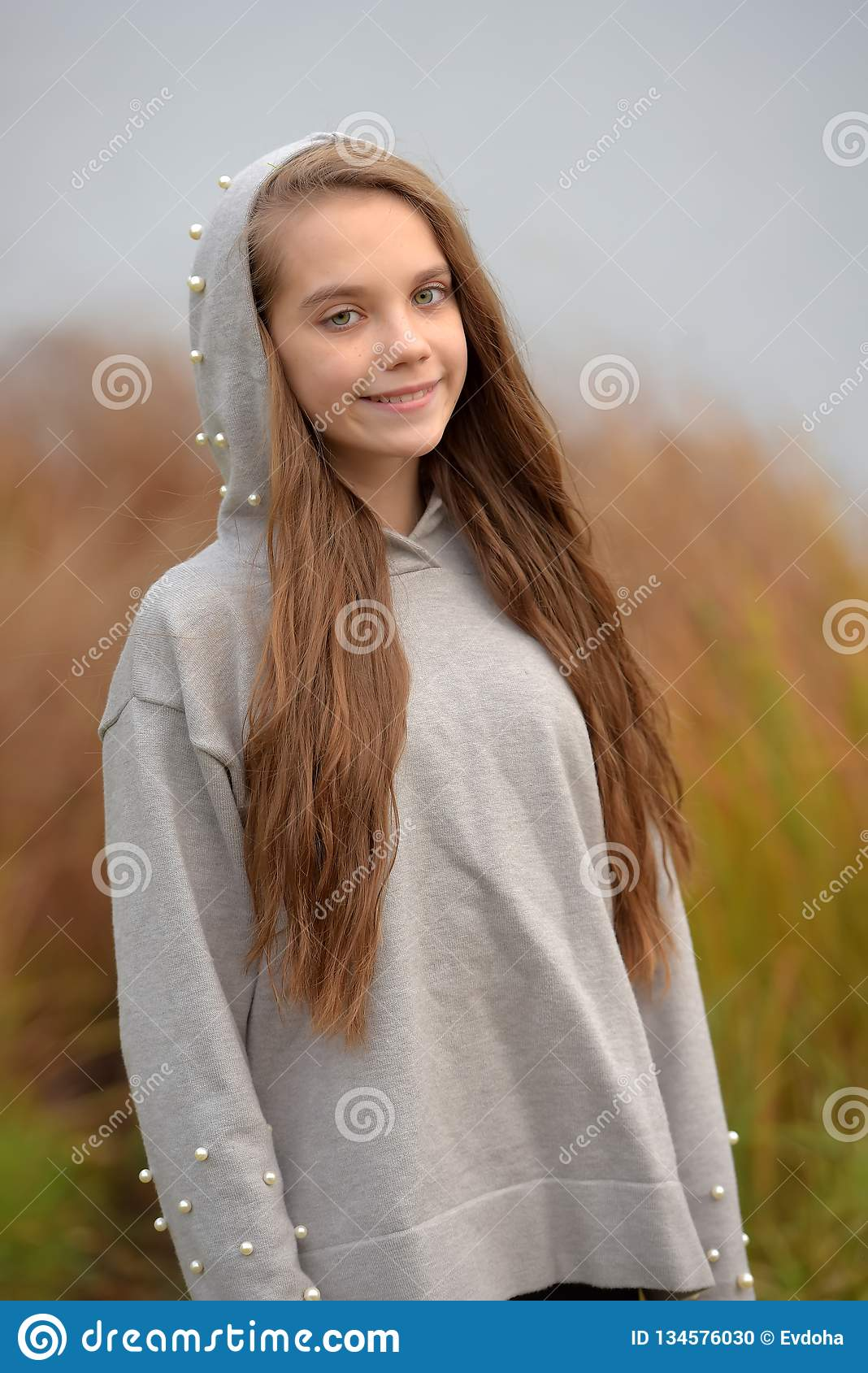 Teen Girl With Long Brown Hair In A Gray Sweater Stock Photo - Image of attractive. solitude: 134576030