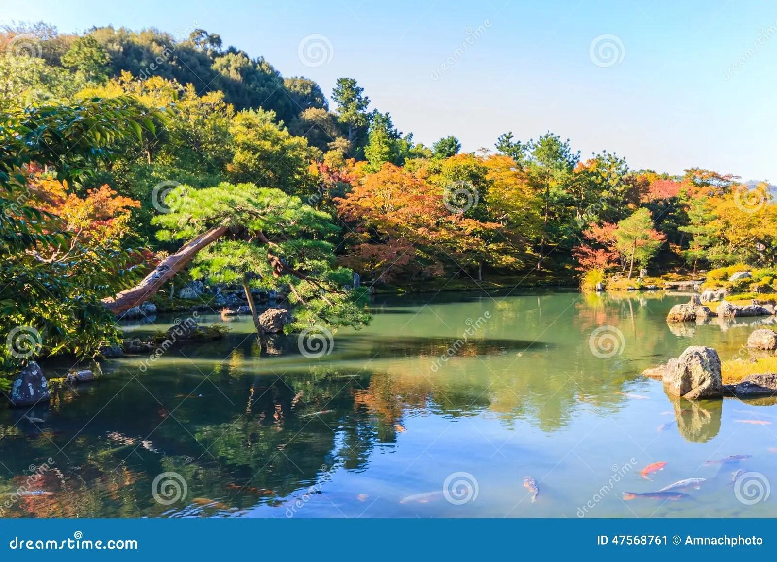 Garten Und Teich Schone Garten Mit Teich Modell Conanpartners