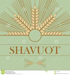 template in a minimalist style to create labels stickers uncluttered layout of the poster shavuot vector illustration for jewish holiday frame of wheat  [ 1300 x 1390 Pixel ]