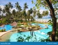 Thai tropical pool stock photo. Image of environment ...