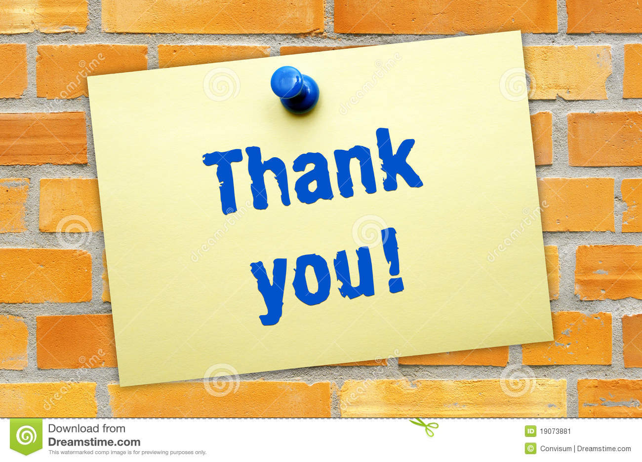 Thank You Note Stock Image Image Of Word Background