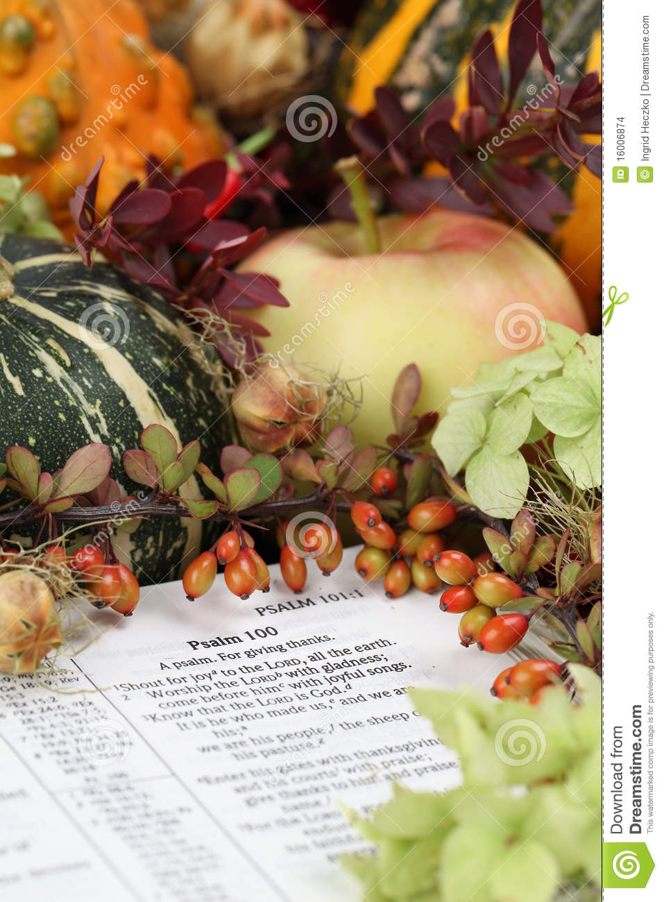 Thanksgiving Bible Stock Images Image 16006874