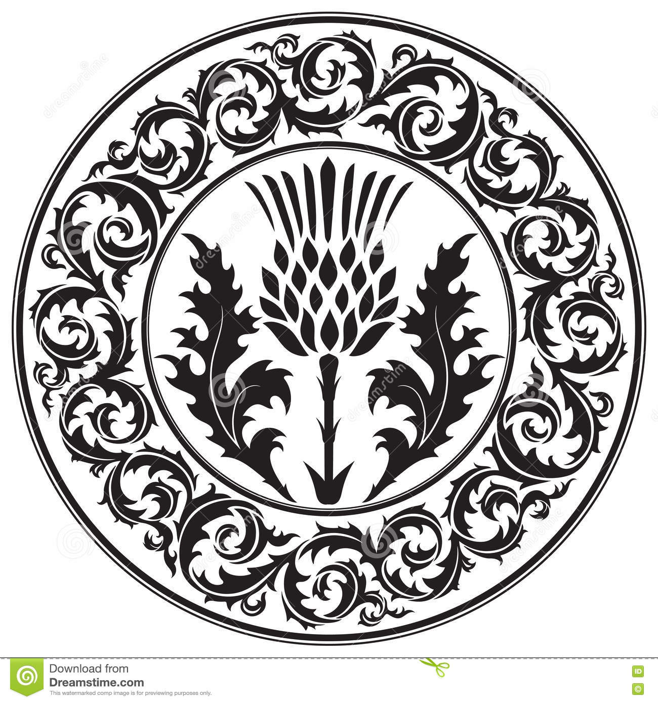 Thistle Flower And Ornament Round Leaf Thistle The Symbol