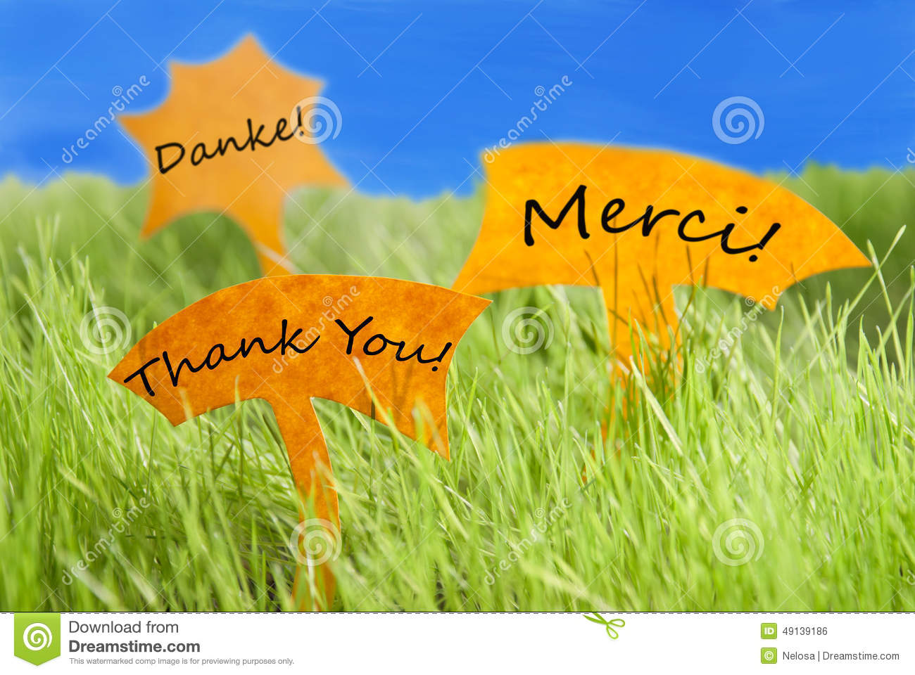 Different Thank You French