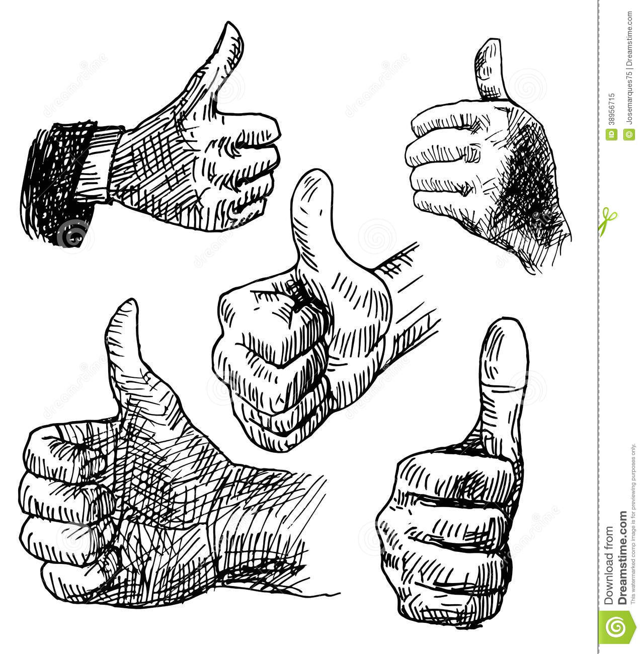 Thumbs Up Stock Vector Illustration Of Approval Network