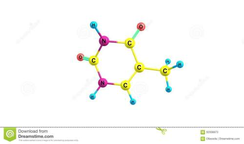 small resolution of thymine t thy is one of the four nucleobases in the nucleic acid of dna 3d illustration