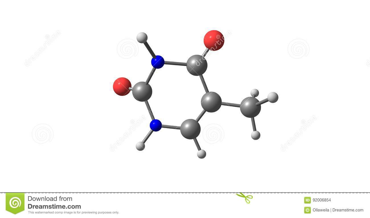hight resolution of thymine t thy is one of the four nucleobases in the nucleic acid of dna 3d illustration