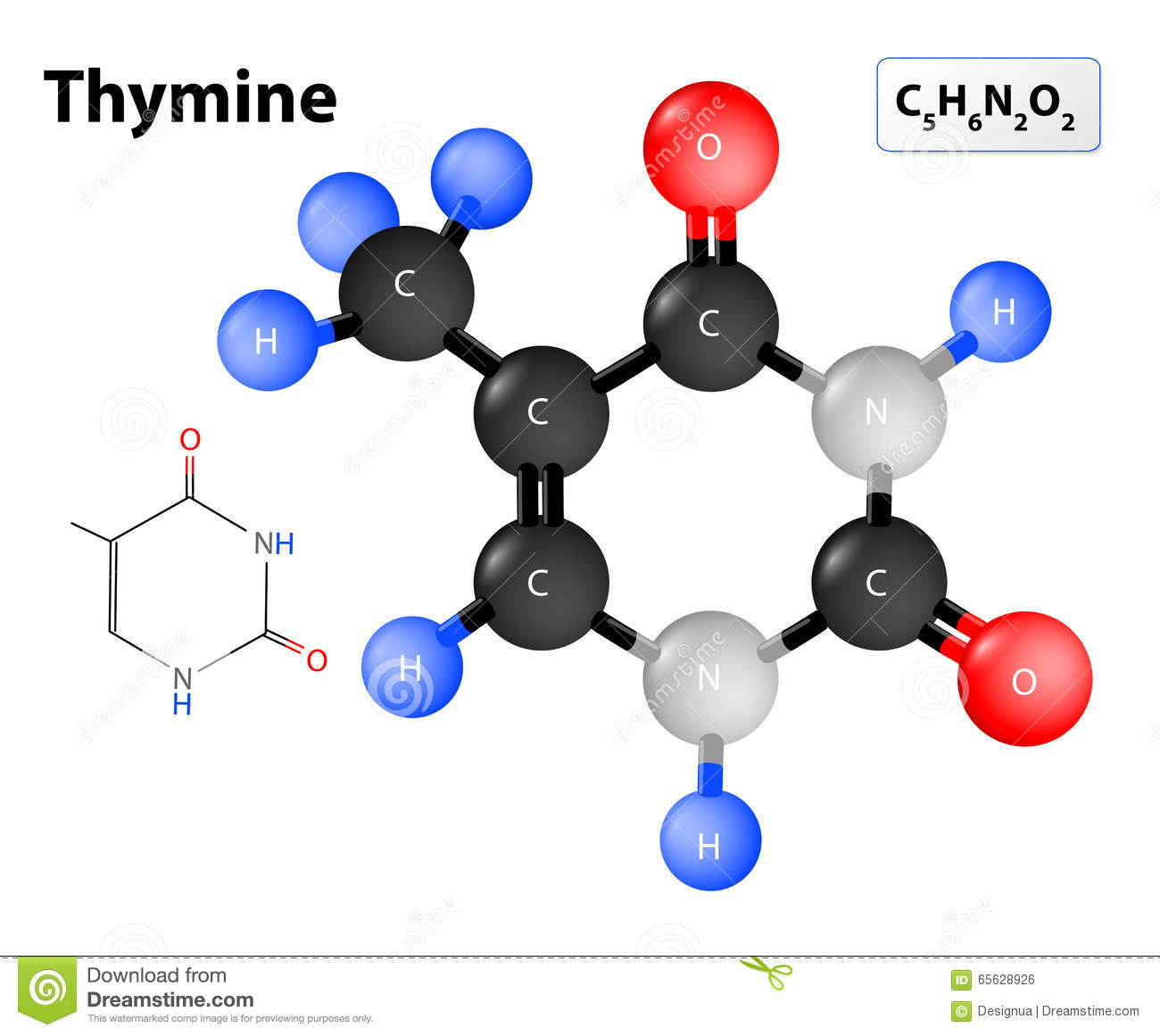 hight resolution of thymine molecule