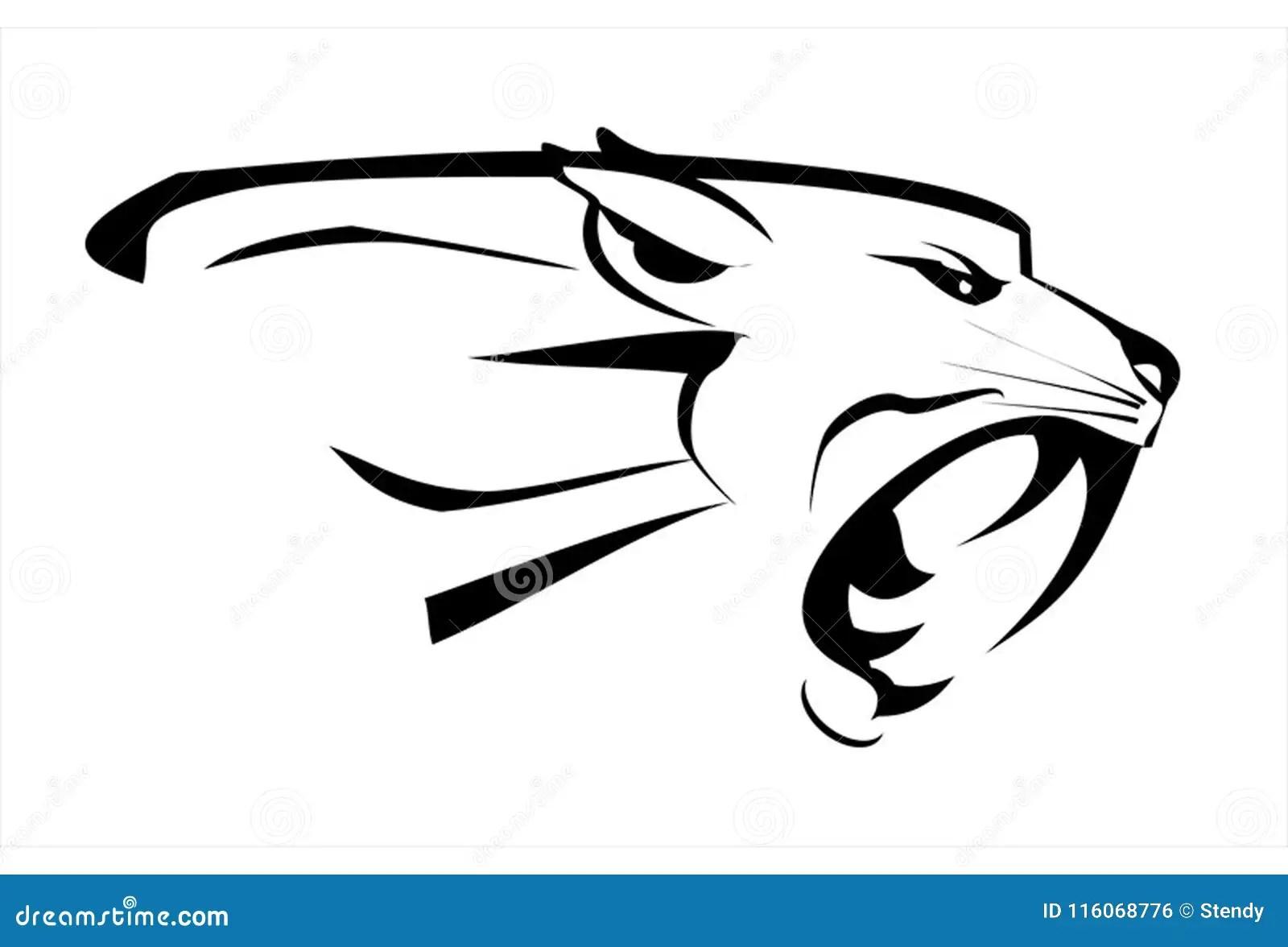 Tiger. Cougar. Tiger Head, Roaring Fang Face Stock Vector