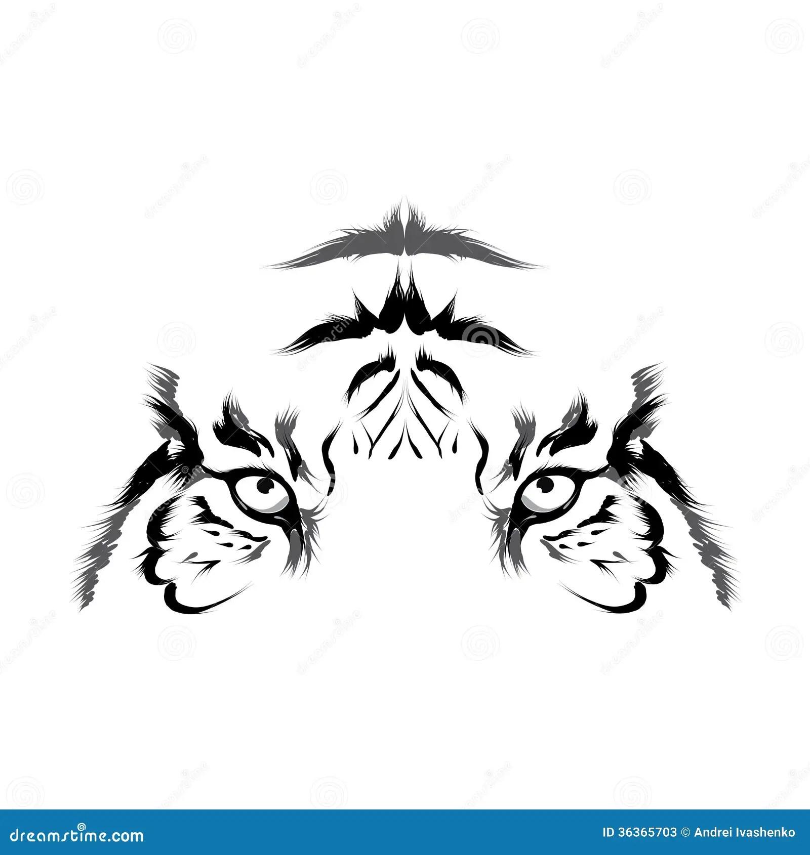 Tiger Head Outline Vector Stock Photos