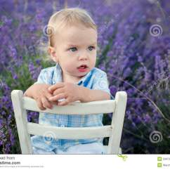Toddler Boy Chair Chairs For Small Spaces Baby In A Lavender Field Stock Photo Image