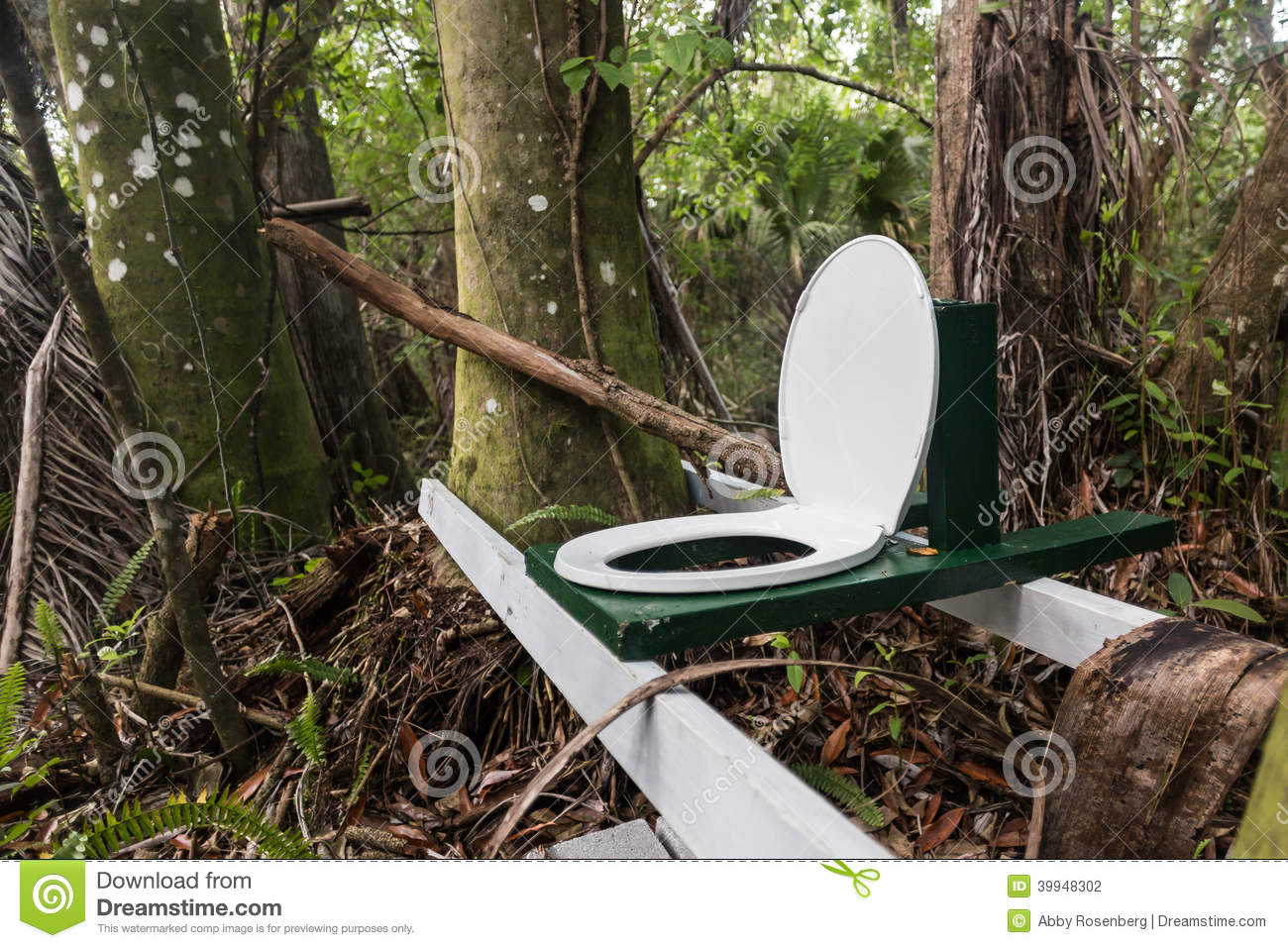 Toilet In The Jungle Stock Photo  Image 39948302