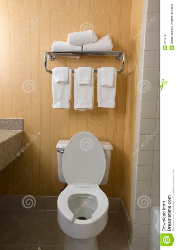 Towel Rack Over Toilet - Home Design Ideas