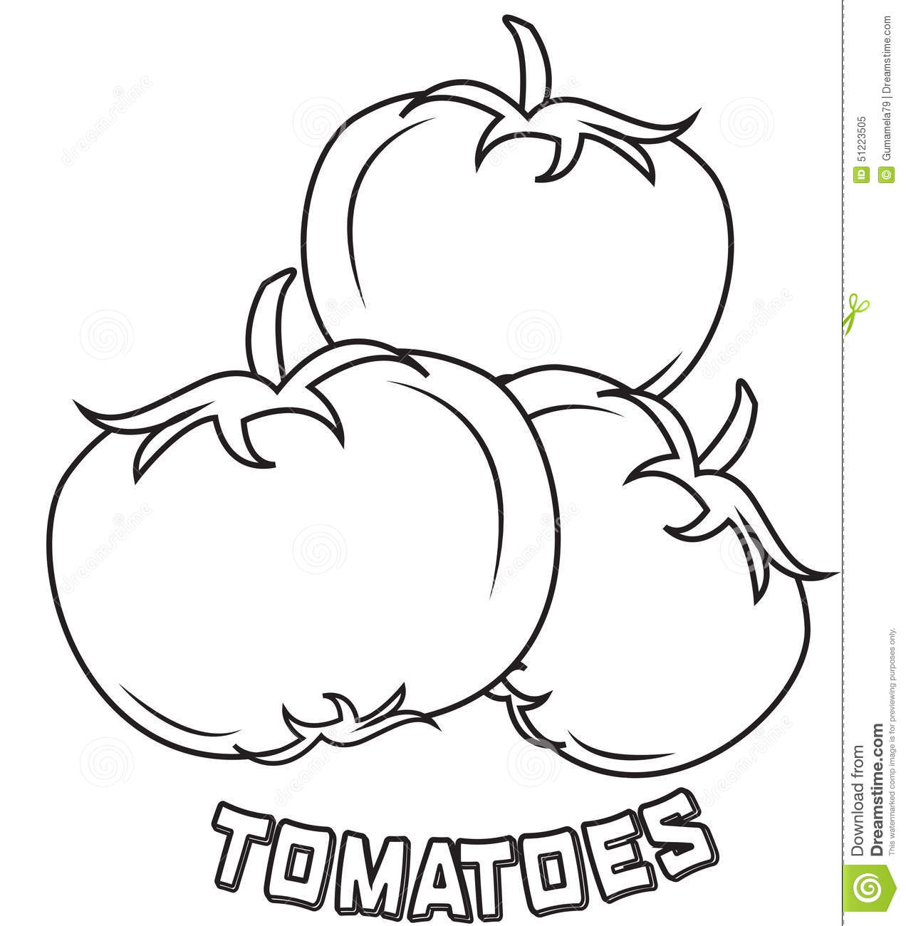 Royalty Free Stock Photo: Tomatoes coloring page. Image
