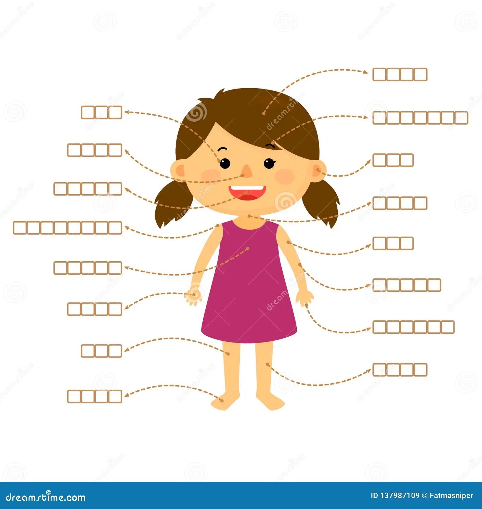 Body Part Girl Quiz Stock Illustration Illustration Of