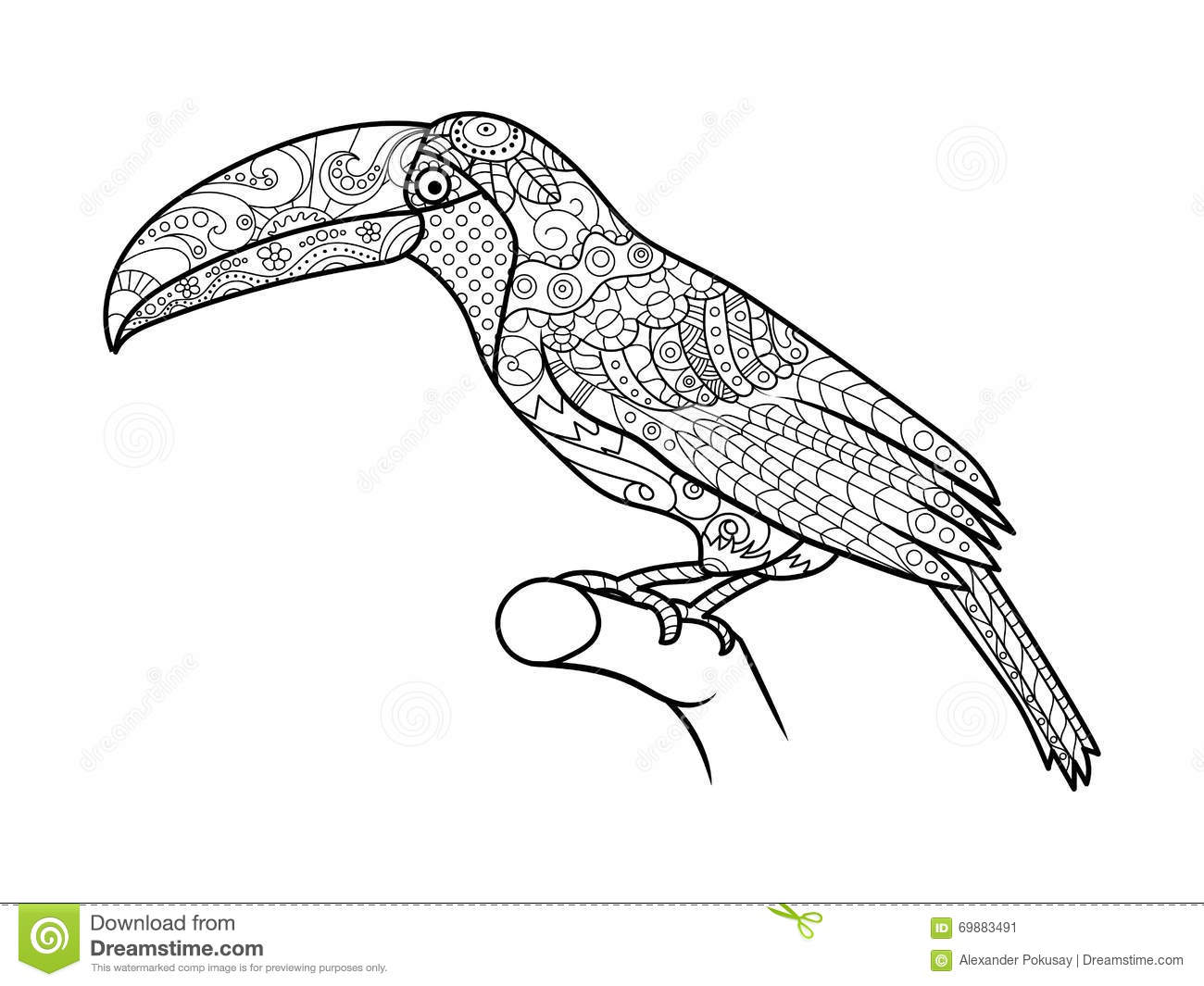 Toucan Coloring Book For Adults Vector Stock Vector