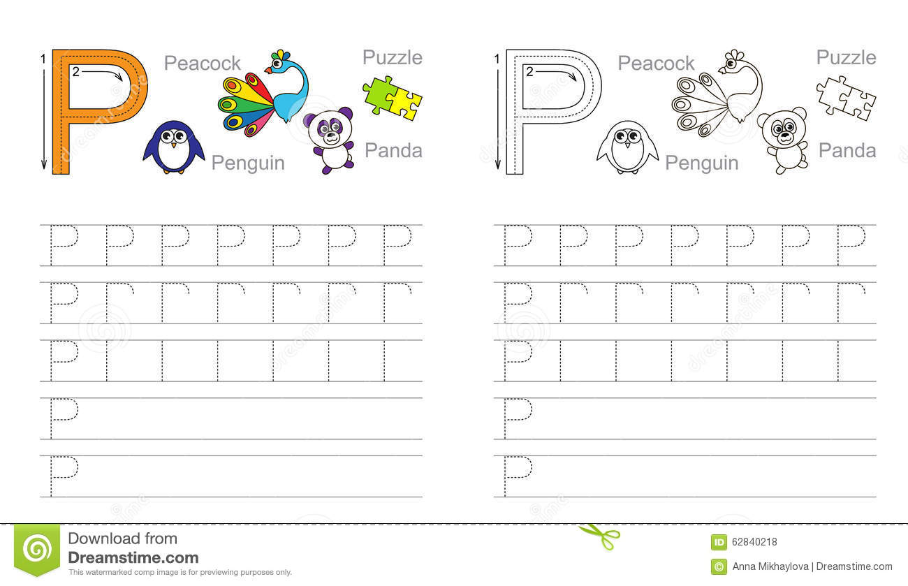 Pp Worksheet