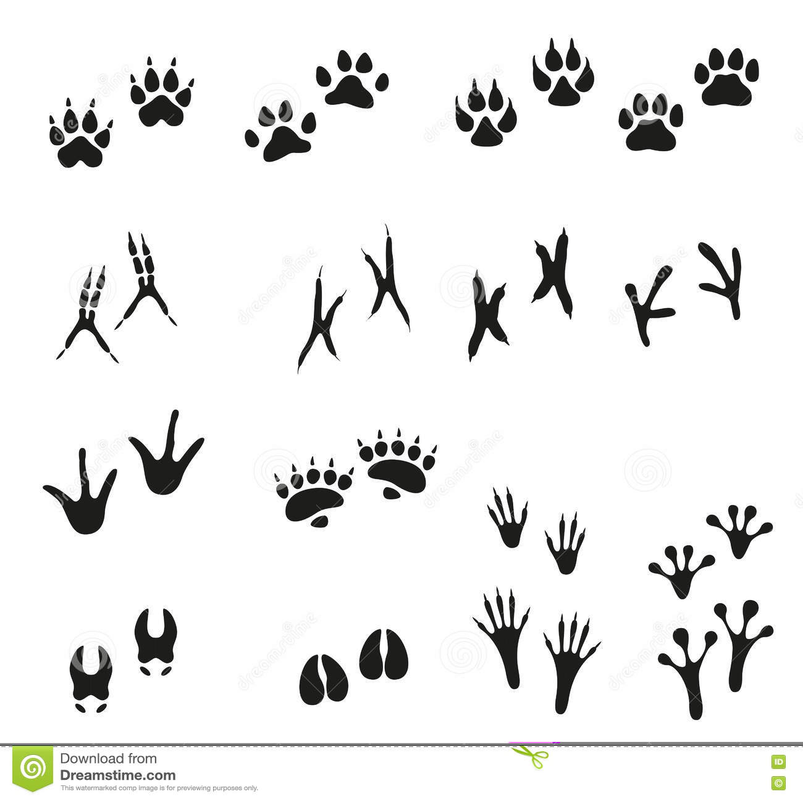 Grunge Animal Tracks Royalty Free Stock Photography