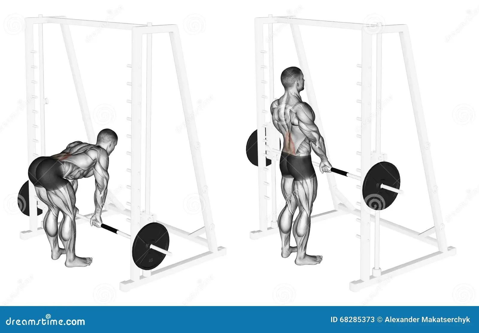 Trainieren Smith Machine Kreuzheben Stock Abbildung