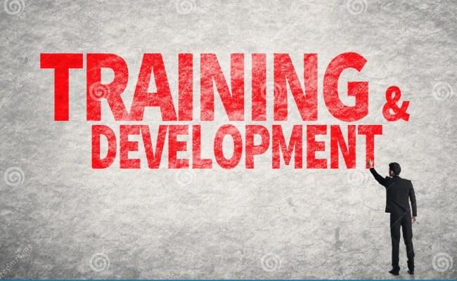 Training Development Stock Photo Image Of Employee
