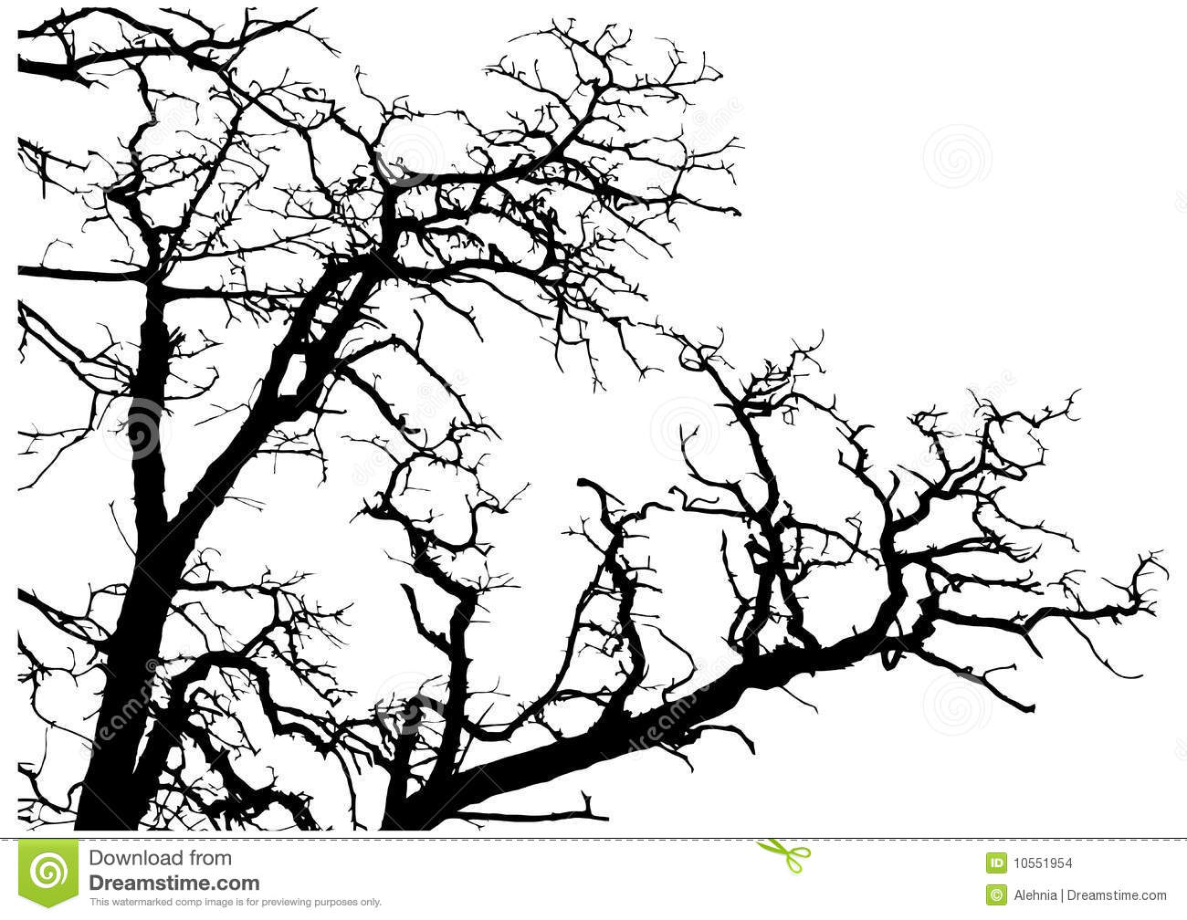 Tree Branches Silhouette Stock Images