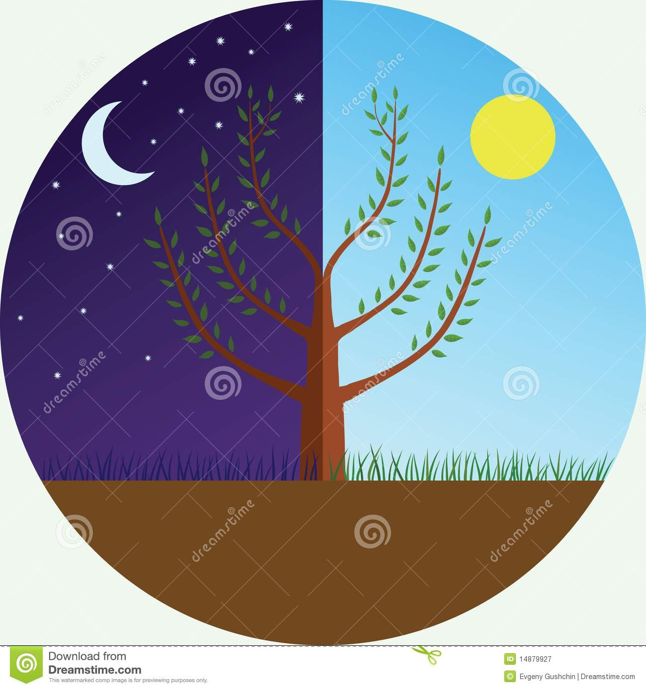 Tree At Day And Night Stock Vector Illustration Of Moon