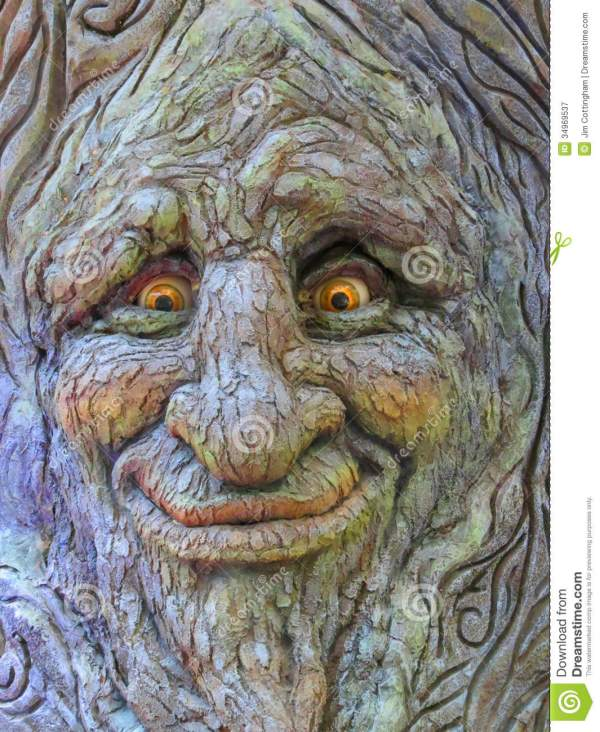 Tree Face Stock Of Funny Bellagio - 34969537