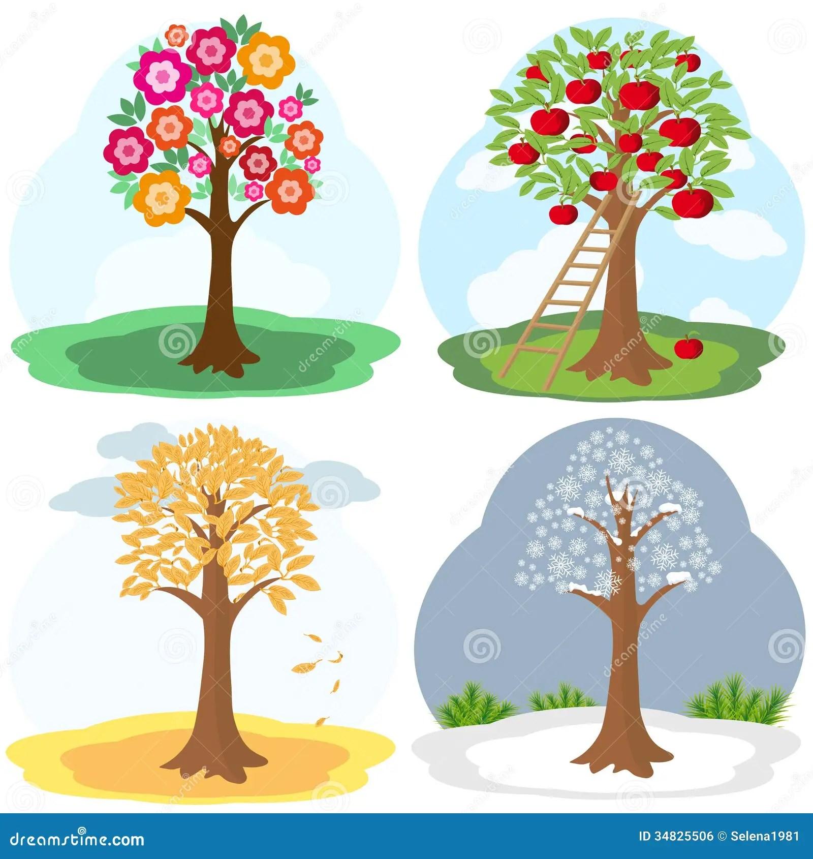 Tree Four Seasons Stock Vector Illustration Of Leaf