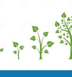 tree growth vector diagram [ 1300 x 848 Pixel ]