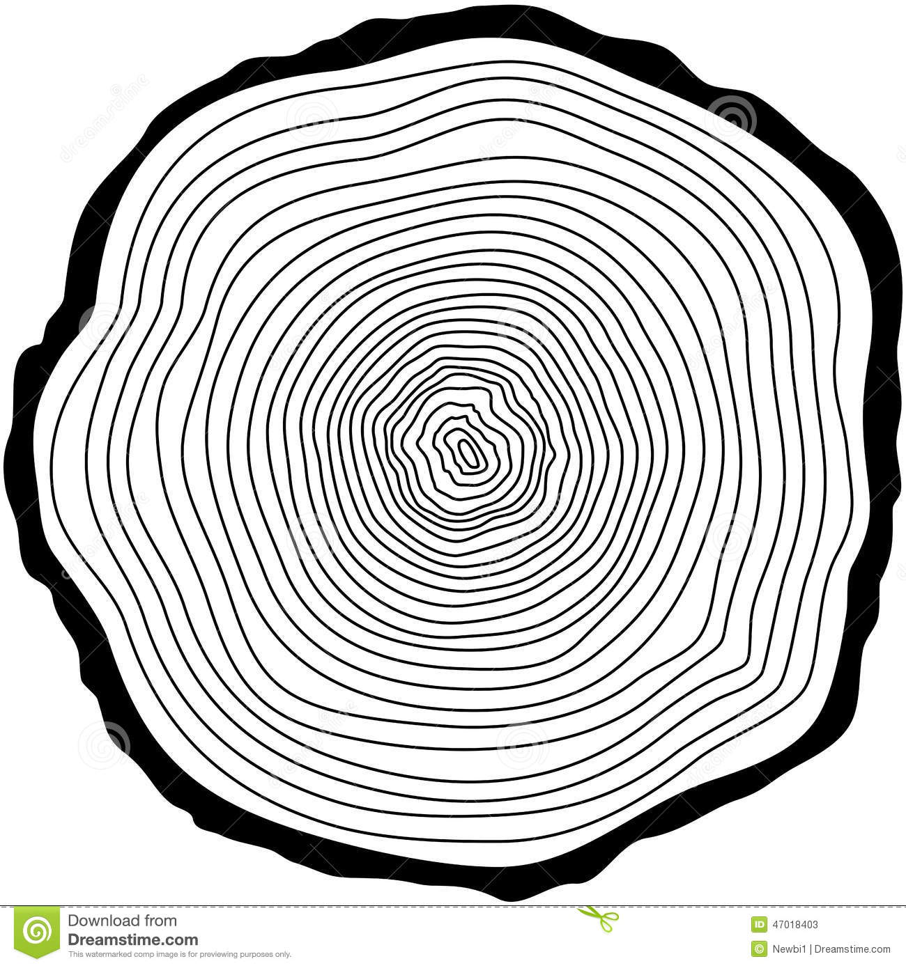 Tree Rings Stock Vector Illustration Of Pattern Rough