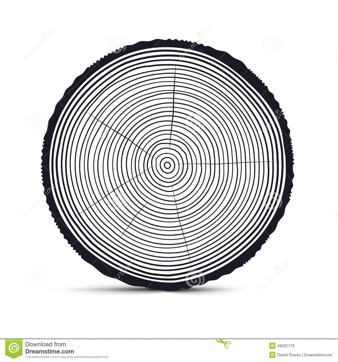 Tree Rings Vector Stock Illustration Illustration Of