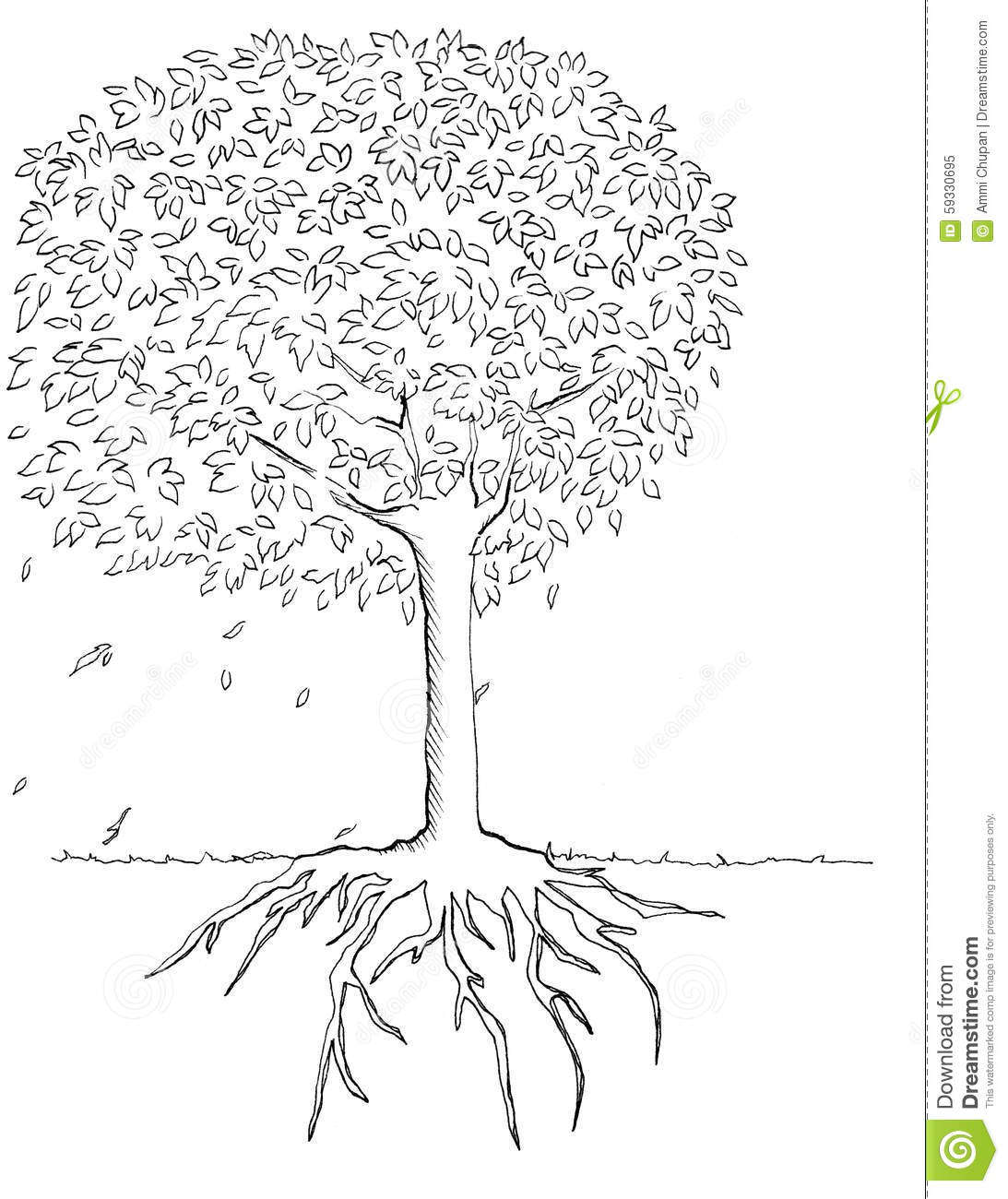 Tree And Root Illustration Hand Drawn Stock Illustration