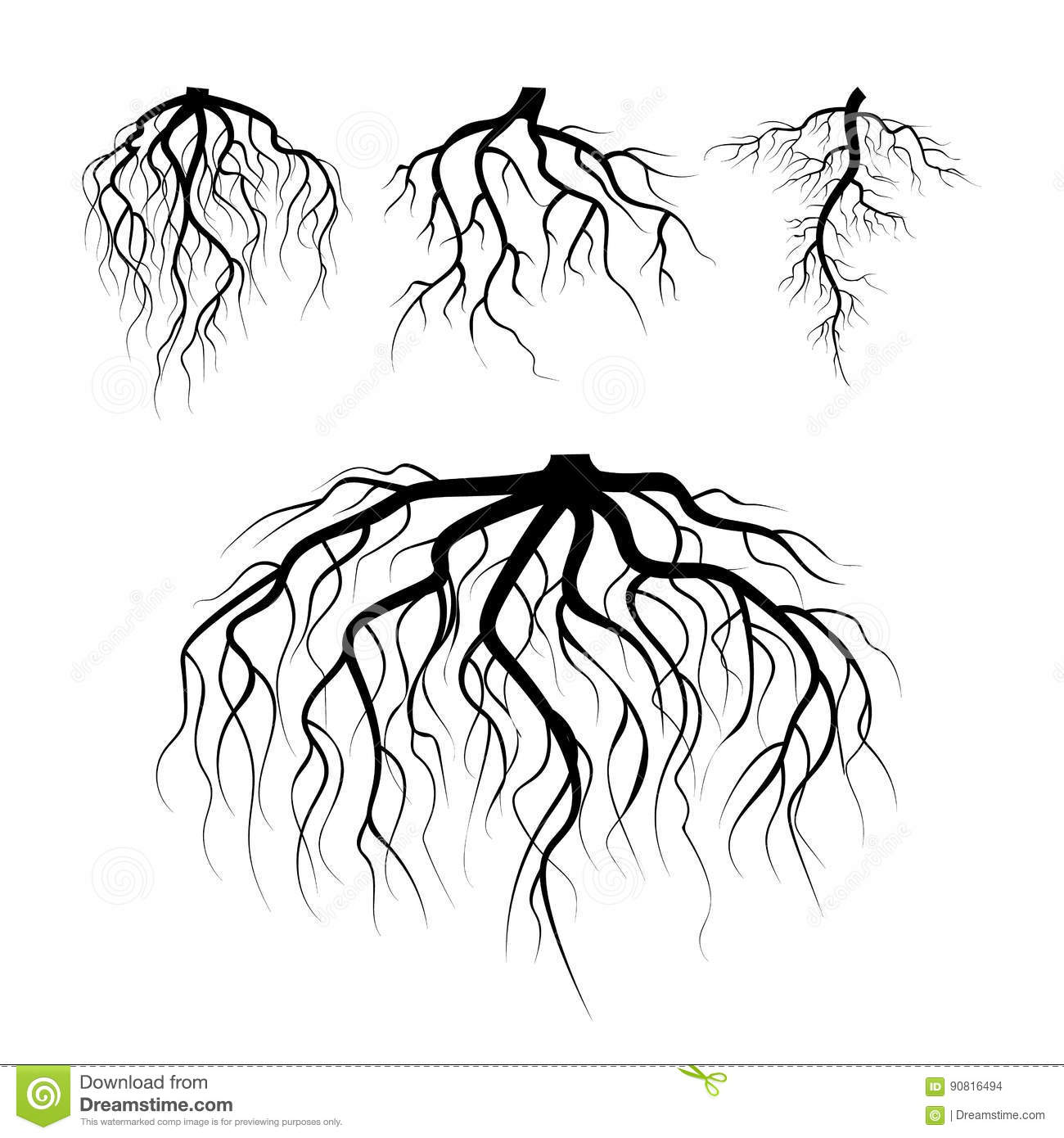Tree Underground Roots Vector Plant Underground Roots Set