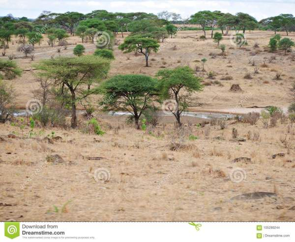 Beautiful Landscapes Of Africa Stock