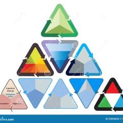 Triangular Diagram For Liquid Extraction 2008 Nissan Altima Engine Triangle Flowchart Illustration Stock